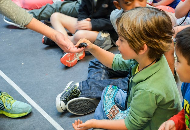 EarlyChildhood-DiscoveryCamp-06